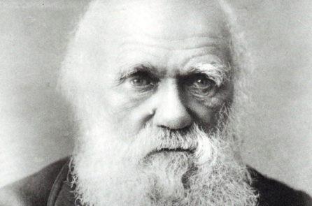 9 lý do chứng minh thuyết tiến hóa của Darwin sai
