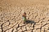El Nino nam 2017