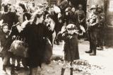 Tâm lý gì đằng sau sự thờ ơ trước những cuộc diệt chủng?