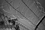 Camera Trung Quốc có mặt khắp nước Mỹ gây lo lắng về an ninh mạng