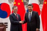Nhiều vấn đề được xoa dịu trong hội nghị cấp cao Trung – Hàn?