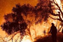 California: Cháy rừng lan rộng hơn diện tích thành phố New York