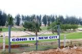 Sai phạm dự án New City: Chia nhỏ đất rừng phòng hộ để không phải xin phép