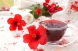 Trà Karkade nổi tiếng ở Ai Cập được làm từ hoa dâm bụt trồng ở hàng rào VN