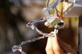 """Video: Thí nghiệm dùng âm thanh """"bẻ cong"""" dòng nước, bạn có thể làm tại nhà"""
