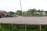 Bà Rịa – Vũng Tàu: Chi hơn 8.200 tỷ đồng xử lý ô nhiễm