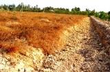 Thuỷ điện trên sông Mekong khiến hơn 60 triệu dân hạ lưu bị ảnh hưởng nghiêm trọng