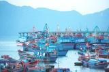 Bình Định: Tìm kiếm hai ngư dân mất tích