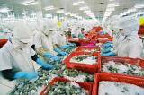 Ngành Thủy sản Việt Nam: Nhiều yếu tố thách thức mục tiêu xuất khẩu 9 tỷ USD