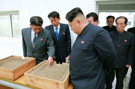 Nhận định của chuyên gia: Không nên tin Triều Tiên từ bỏ hạt nhân