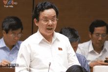 ĐBQH: Việc bán tài sản Nhà nước như 'kền kền ăn xác chết'