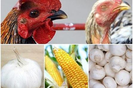 7 loại thực phẩm Trung Quốc được truyền thông Mỹ cảnh báo không nên ăn