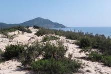Đất nền ven biển Lăng Cô tăng giá bất thường