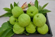Một vài loại trái cây thích hợp cho người bị tiểu đường