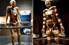 Triển lãm vì khoa học hay kiếm tiền trên thi thể người?
