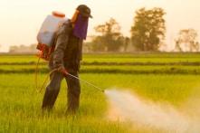 Monsanto thua kiện: 60% thuốc diệt cỏ ở Việt Nam chứa chất gây ung thư