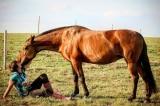 Tình bạn tri kỷ xúc động giữa cô gái và chú ngựa Shay