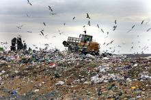 Trung Quốc dừng nhập rác thải nhựa, Mỹ chật vật xoay xở