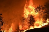Cháy rừng California: 25 người chết, Trump bị chỉ trích vì phát ngôn tranh cãi