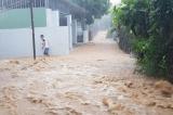 Nha Trang: Mưa lớn gây sạt lở nhiều nơi, 12 người chết