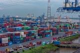 Hãng tàu, bến cảng đình trệ hoạt động do dịch corona