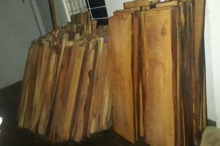 Phát hiện nhiều gỗ lậu trong kho Nhà máy thuỷ điện Sông Tranh 3
