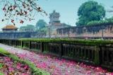 Đường xưa Thành Nội