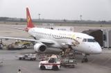 """Nhiều hành khách TQ bị bắt vì ném đồng xu vào động cơ máy bay để """"cầu may"""""""