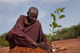 Người đàn ông chặn đứng sa mạc bằng phương pháp canh tác cổ đại
