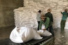Hơn 1.000 tấn gạo cứu đói cho Đắk Lắk, Thanh Hóa