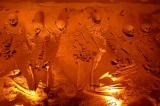 Những bộ xương người cổ đại mâu thuẫn với thuyết tiến hóa