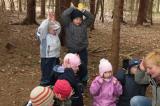"""Vì sao các trường """"mẫu giáo trong rừng"""" nở rộ ở Đức?"""