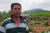 Vụ phá hàng ngàn cây keo: Đền bù 4.000 đồng/cây, người dân phản đối