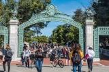 Cựu giáo sư Harvard: Ý thức hệ nguy hiểm đã xâm nhập trường học