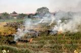 Hà Nội vận động người dân không đốt rơm rạ, ngừng dùng than tổ ong