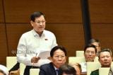 Dự thảo Luật Đầu tư sửa đổi: ĐBQH đề nghị cấm kinh doanh bào thai, bóng cười, shisha