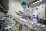 Dịch COVID-19 có làm gián đoạn nguồn cung ứng thuốc trên toàn cầu?