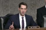 Video: Thượng nghị sĩ Tom Cotton cảnh báo nước Mỹ về virus corona TQ