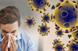 10 thói quen xấu khiến virus dễ lây lan