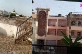 Ấn Độ chịu thảm họa châu chấu nghiêm trọng nhất 26 năm qua